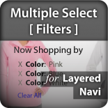 Multiple Select In Layered Navigation (Filters)